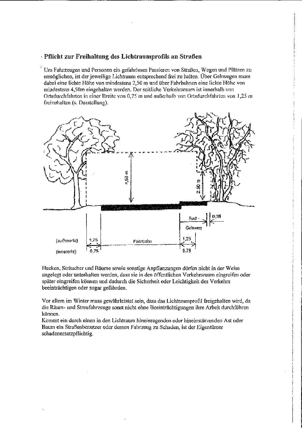 Sträucher Und Bäume Schneiden